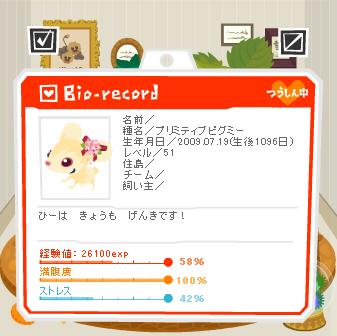2012ひーちゃん.jpg